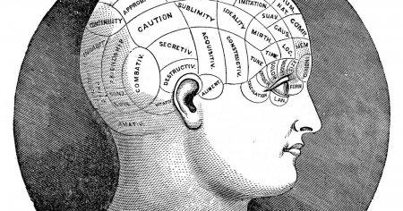 Феномен сознания до сих пор не объяснён